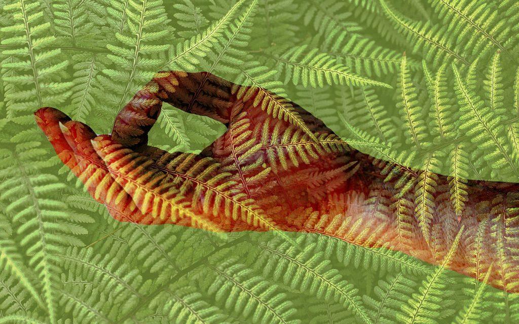 Tervist parandavad käteasendid